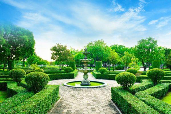 vườn trung tâm